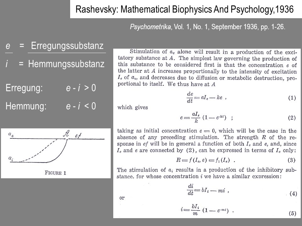 Rashevsky: Mathematical Biophysics And Psychology,1936