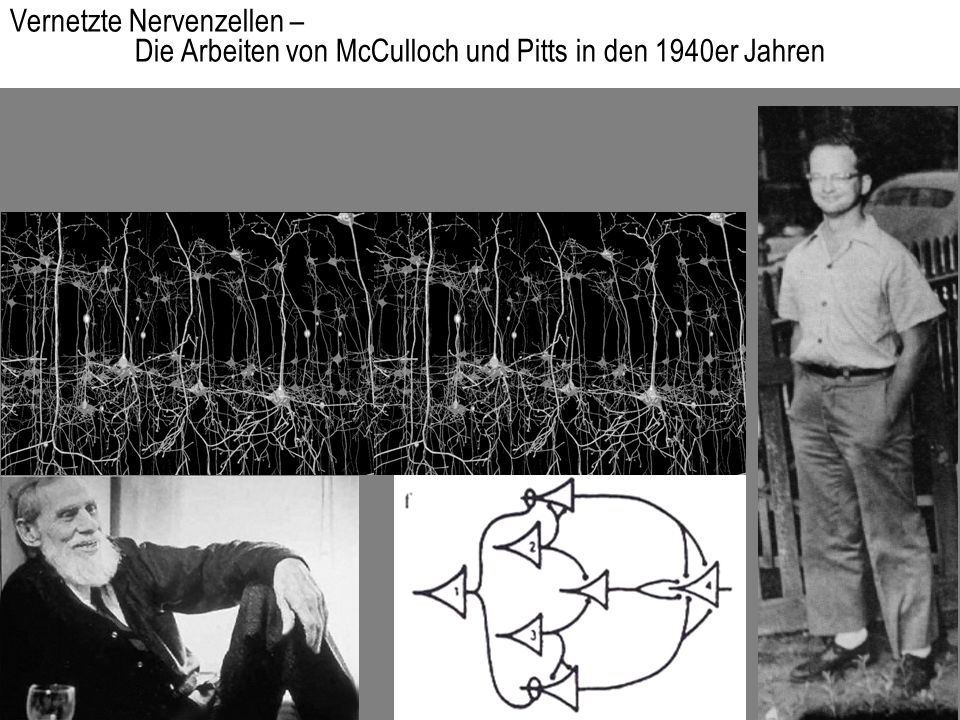 Vernetzte Nervenzellen –