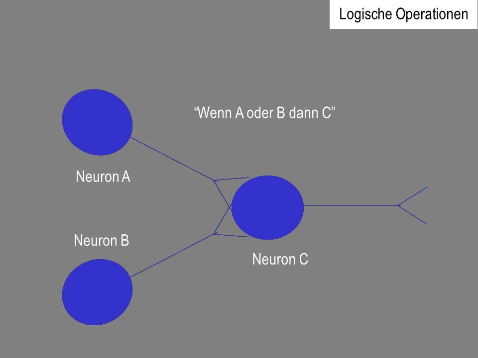 Logische Operationen Wenn A oder B dann C Neuron A Neuron B Neuron C