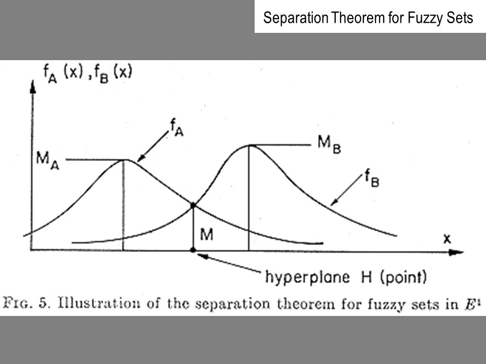 Separation Theorem for Fuzzy Sets