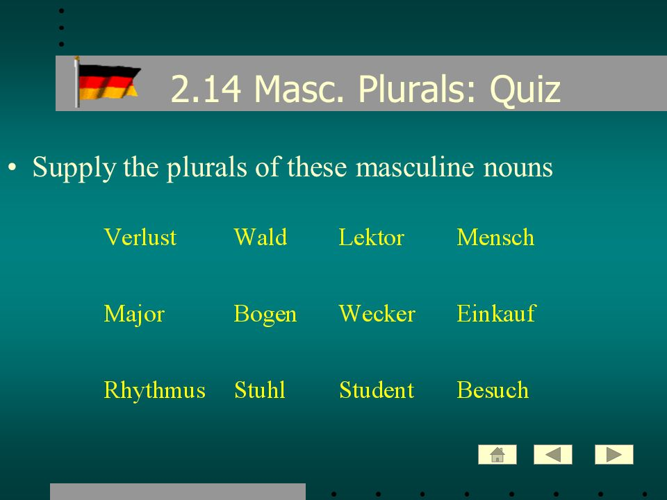2.14 Masc. Plurals: Quiz Supply the plurals of these masculine nouns
