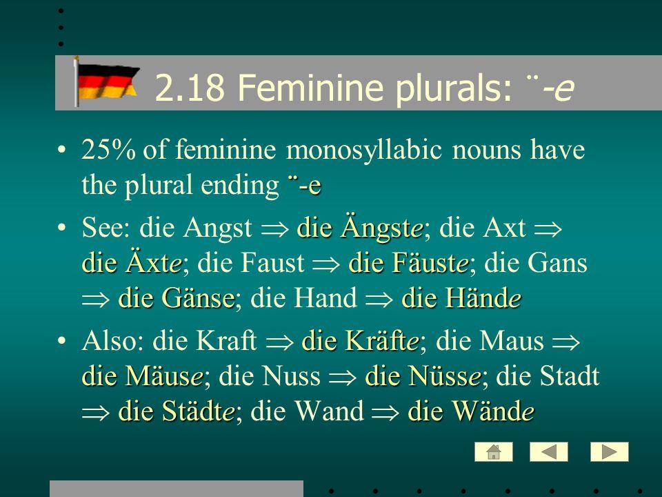 2.18 Feminine plurals: ¨-e 25% of feminine monosyllabic nouns have the plural ending ¨-e.