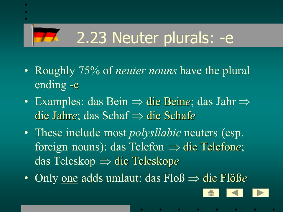2.23 Neuter plurals: -e Roughly 75% of neuter nouns have the plural ending -e.