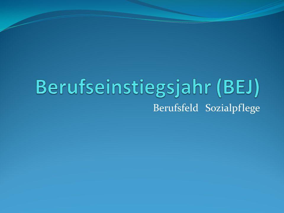 Berufseinstiegsjahr (BEJ)