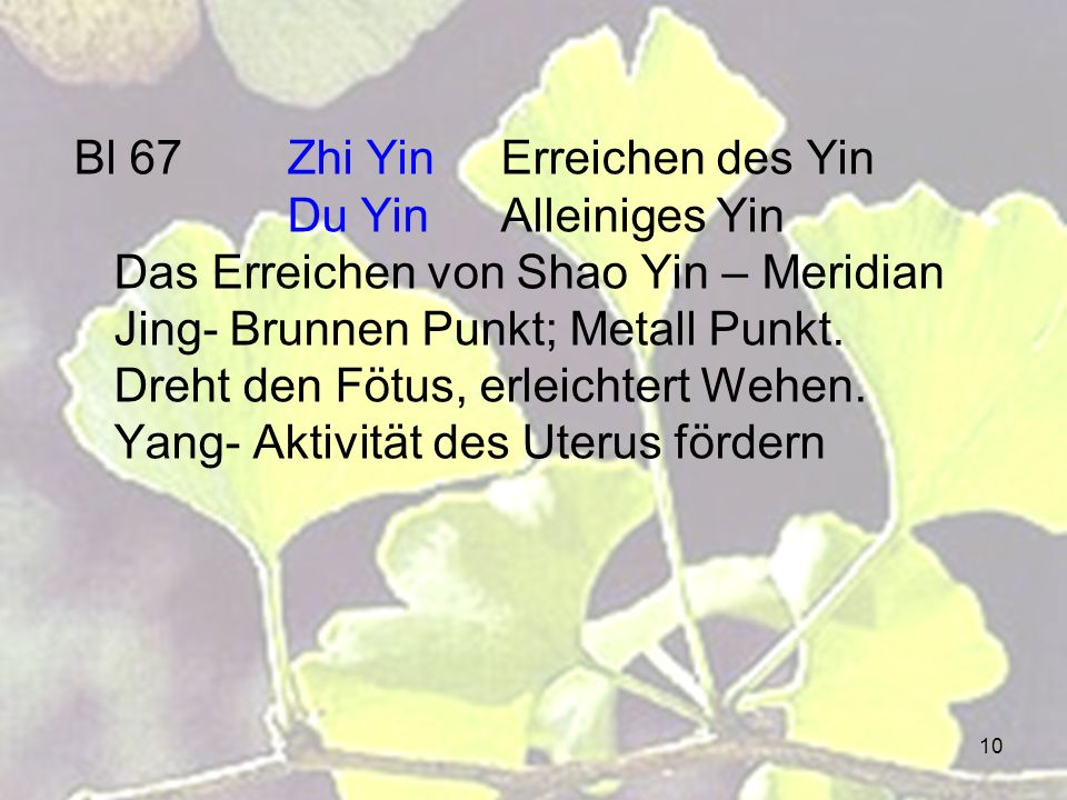 Bl 67. Zhi Yin. Erreichen des Yin. Du Yin. Alleiniges Yin