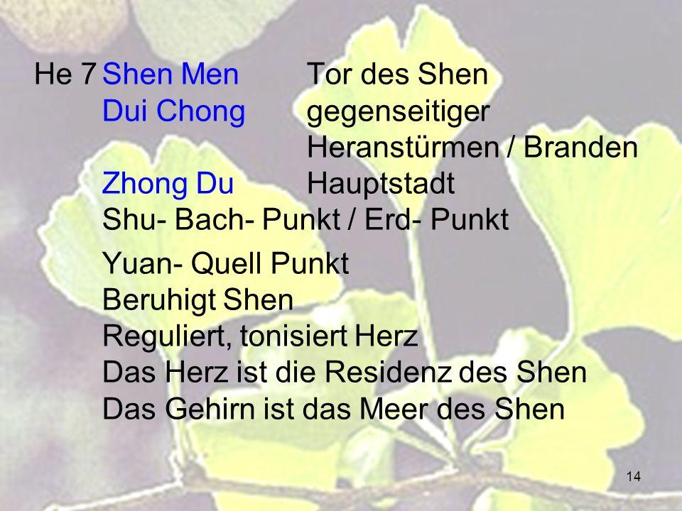 He 7. Shen Men. Tor des Shen. Dui Chong. gegenseitiger