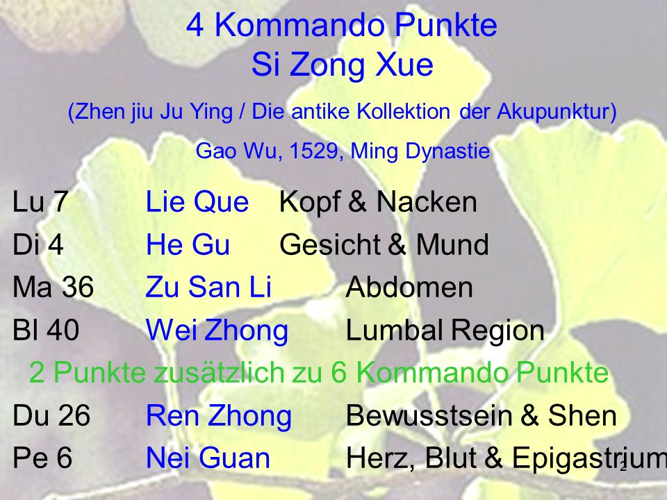 4 Kommando Punkte Si Zong Xue