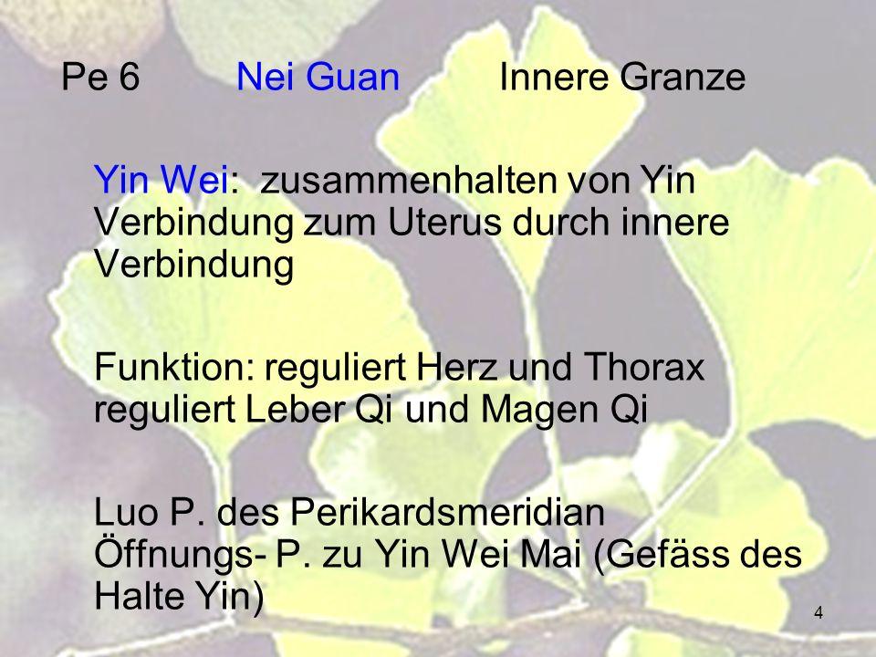 Pe 6 Nei Guan Innere Granze