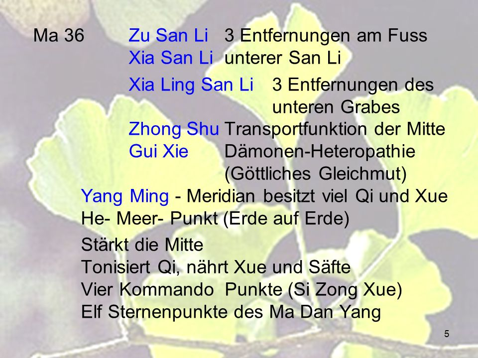 Ma 36 Zu San Li 3 Entfernungen am Fuss Xia San Li unterer San Li