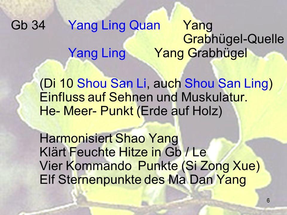 Gb 34 Yang Ling Quan Yang Grabhügel-Quelle Yang Ling Yang Grabhügel