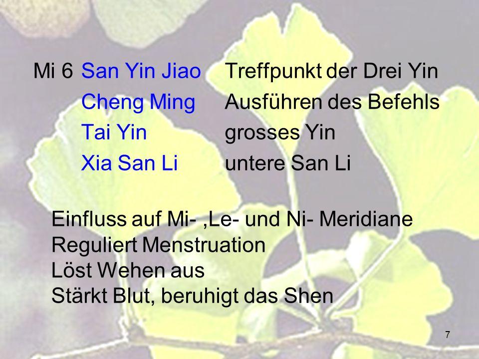 Mi 6 San Yin Jiao Treffpunkt der Drei Yin