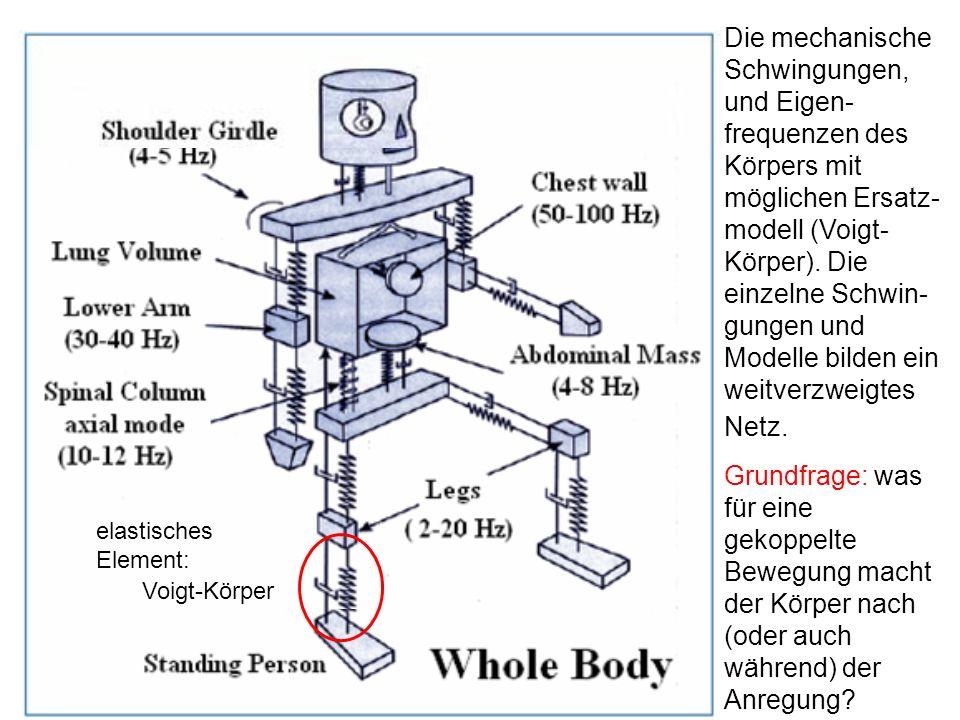 Die mechanische Schwingungen, und Eigen-frequenzen des Körpers mit möglichen Ersatz-modell (Voigt-Körper). Die einzelne Schwin-gungen und Modelle bilden ein weitverzweigtes Netz.