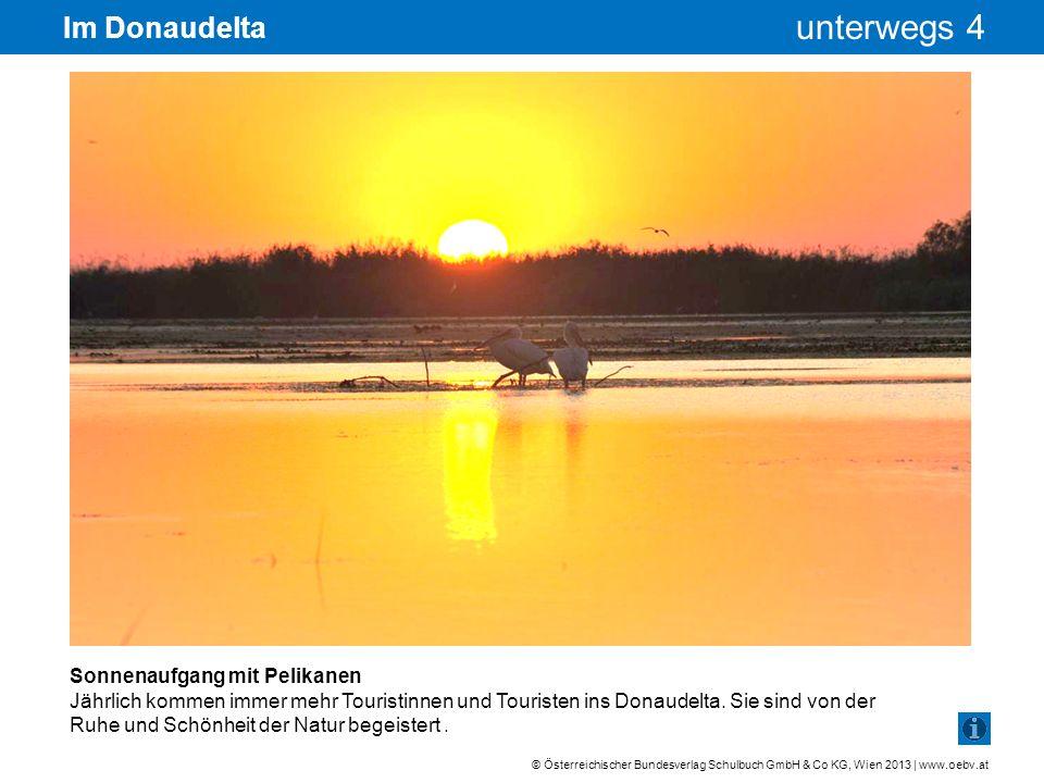 Im Donaudelta Sonnenaufgang mit Pelikanen