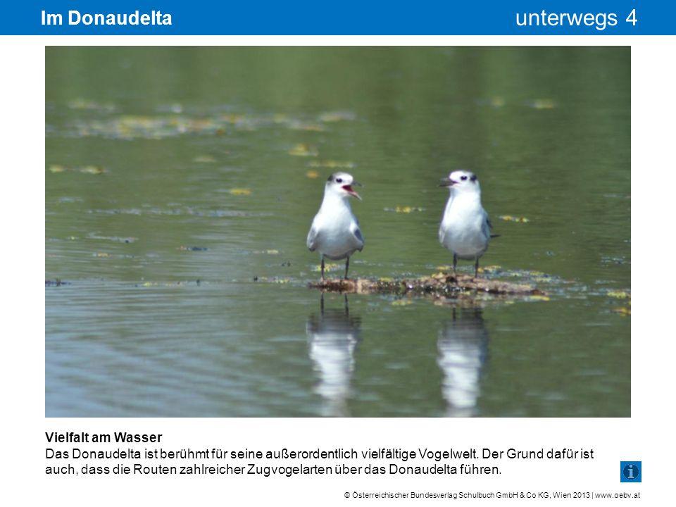 Im Donaudelta Vielfalt am Wasser