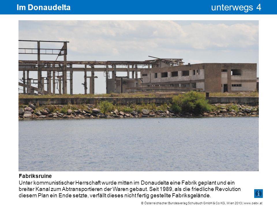 Im Donaudelta Fabriksruine