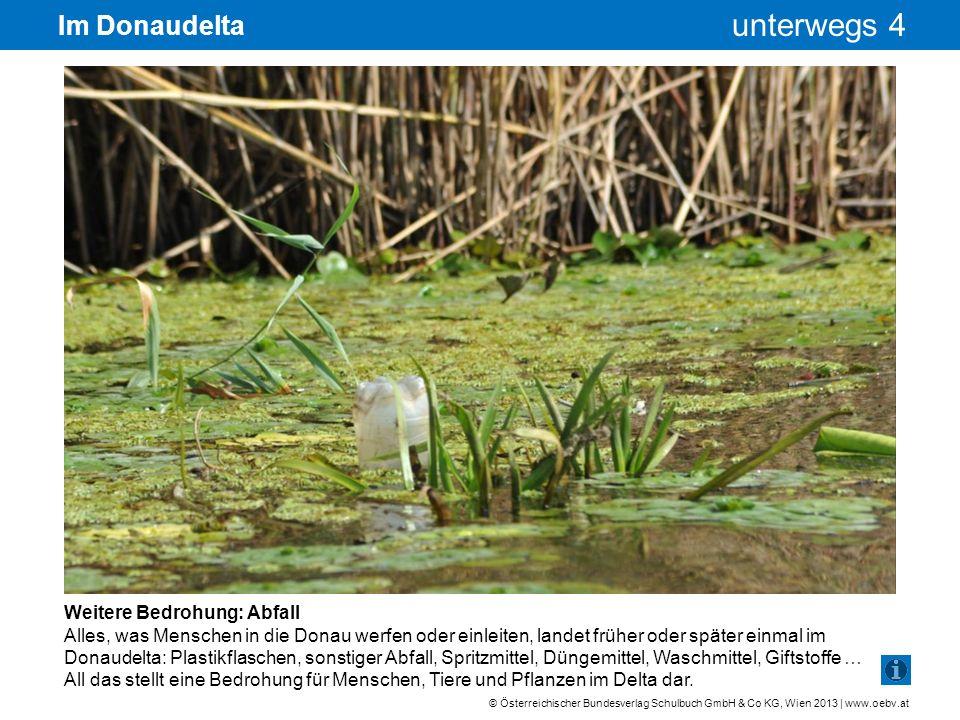 Im Donaudelta Weitere Bedrohung: Abfall
