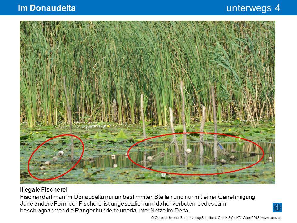 Im Donaudelta Illegale Fischerei
