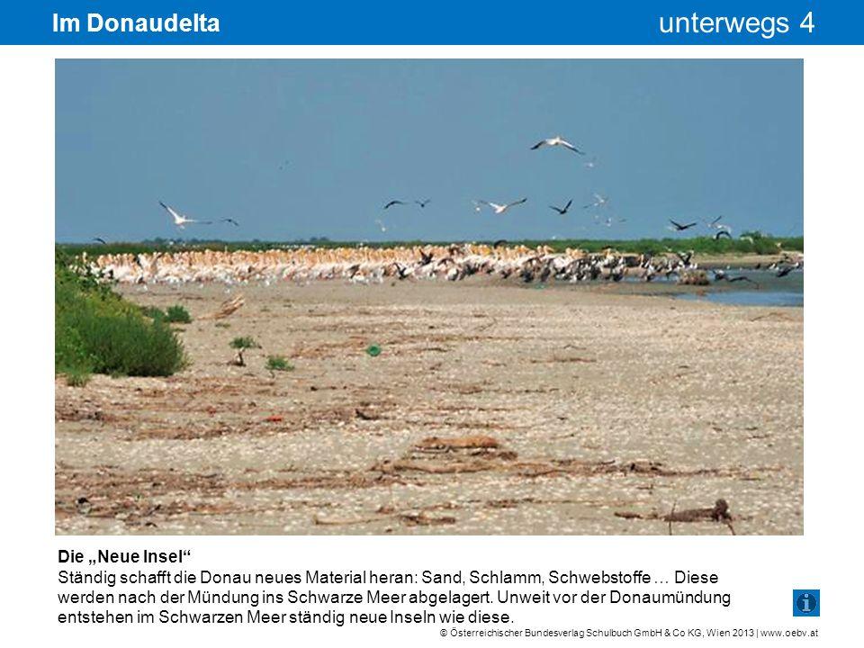 """Im Donaudelta Die """"Neue Insel"""