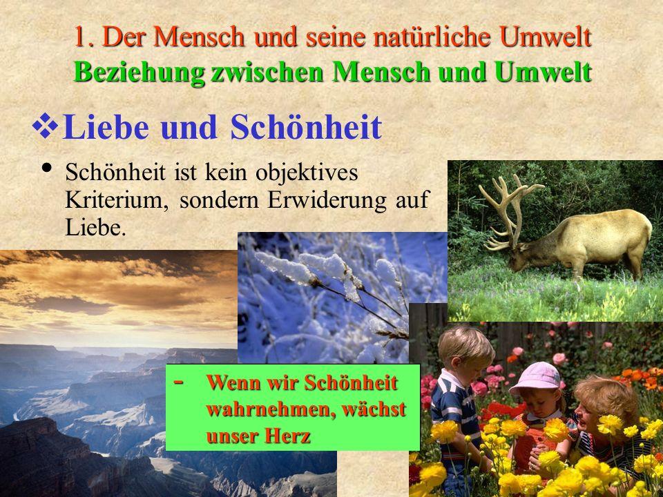 1. Der Mensch und seine natürliche Umwelt Beziehung zwischen Mensch und Umwelt