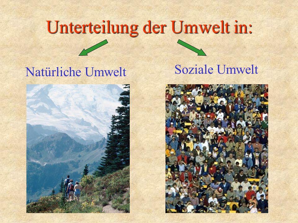 Unterteilung der Umwelt in: