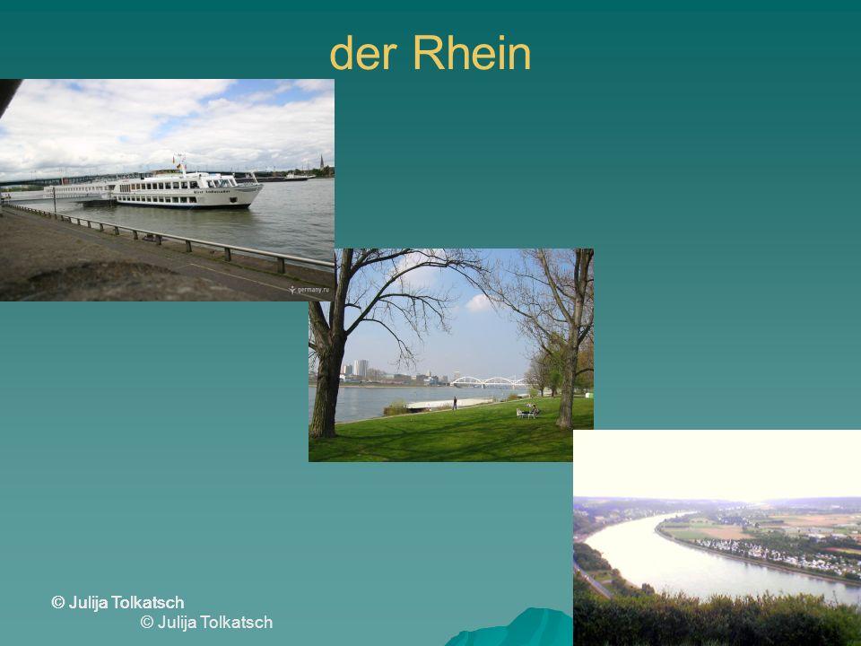 der Rhein © Julija Tolkatsch © Julija Tolkatsch © Julija Tolkatsch