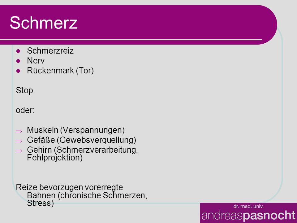 Schmerz Schmerzreiz Nerv Rückenmark (Tor) Stop oder: