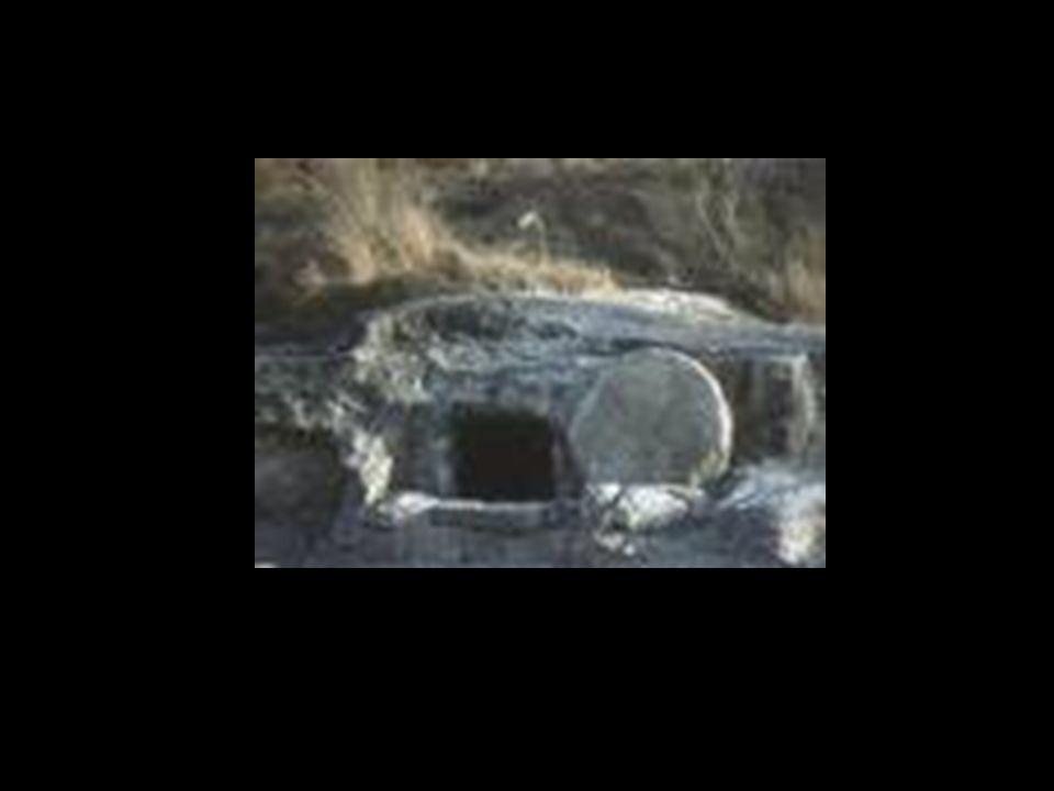 Wenn du mit mir gebetest hast, dann hast du jetzt schon Anteil mit Jesu' Auferstehung! Du bist neu! Das Alte ist vergangen!! (2 Kor 5:17)