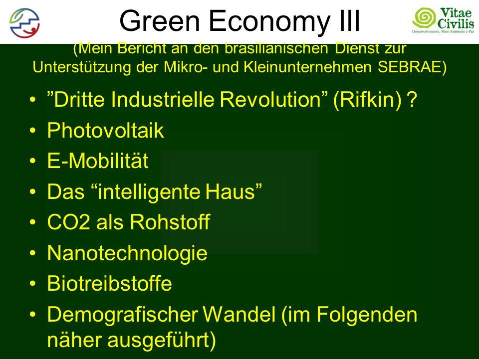 Green Economy III (Mein Bericht an den brasilianischen Dienst zur Unterstützung der Mikro- und Kleinunternehmen SEBRAE)