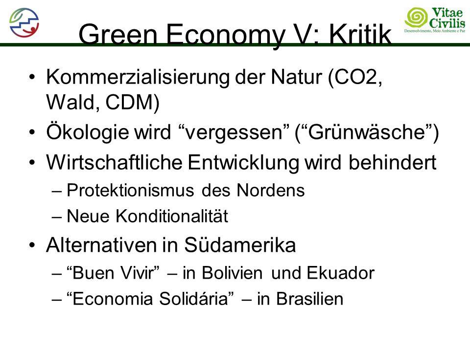 Green Economy V: Kritik