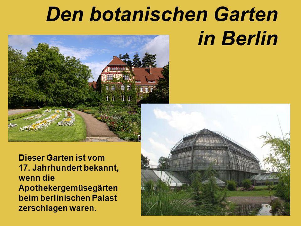 Den botanischen Garten in Berlin