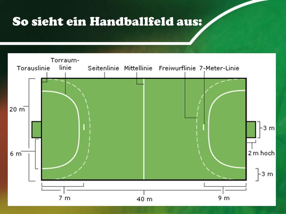 So sieht ein Handballfeld aus: