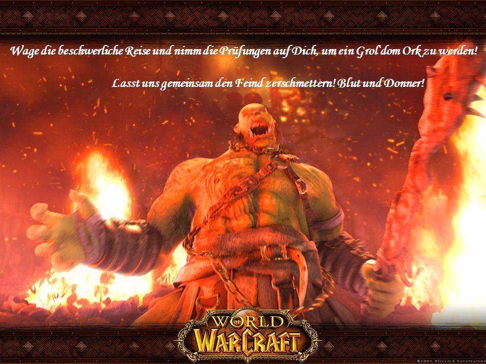 Lasst uns gemeinsam den Feind zerschmettern! Blut und Donner!