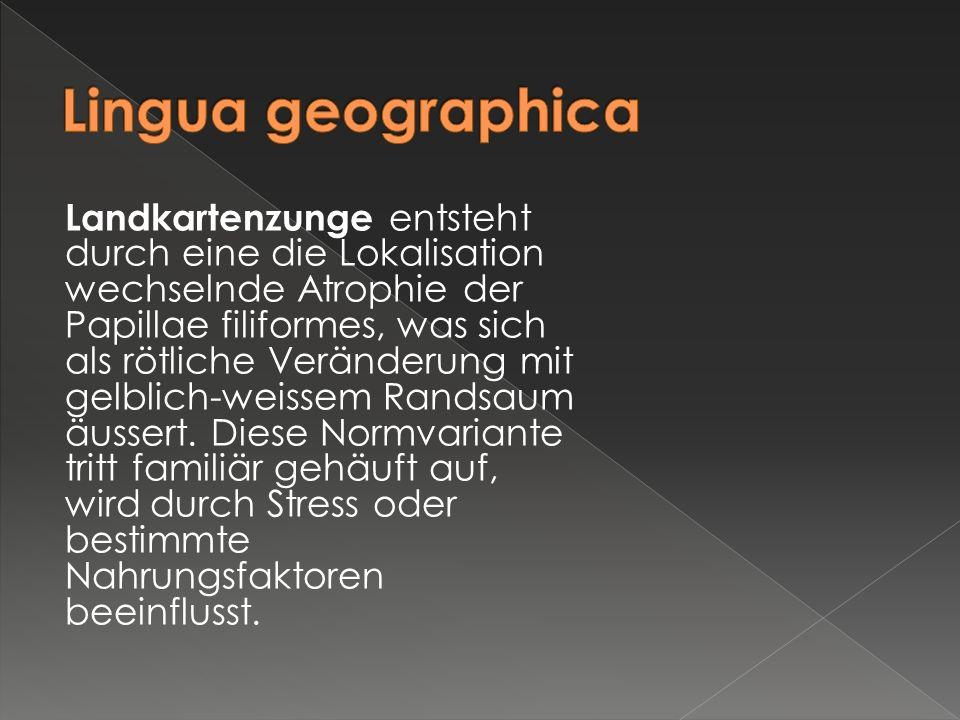 Lingua geographica