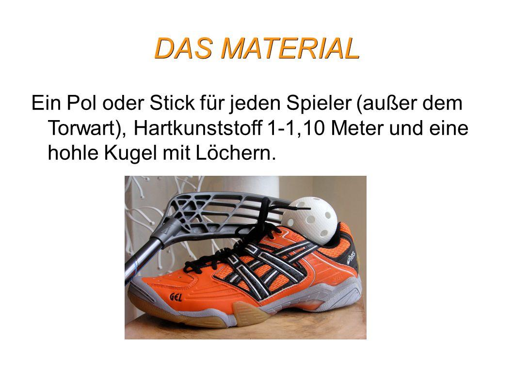DAS MATERIAL Ein Pol oder Stick für jeden Spieler (außer dem Torwart), Hartkunststoff 1-1,10 Meter und eine hohle Kugel mit Löchern.