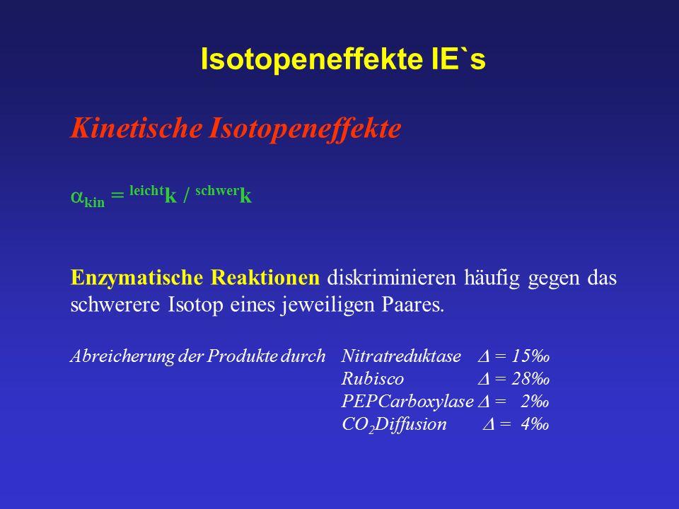 Kinetische Isotopeneffekte