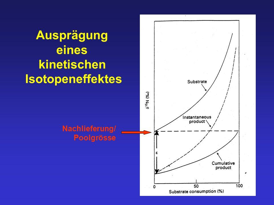 Ausprägung eines kinetischen Isotopeneffektes