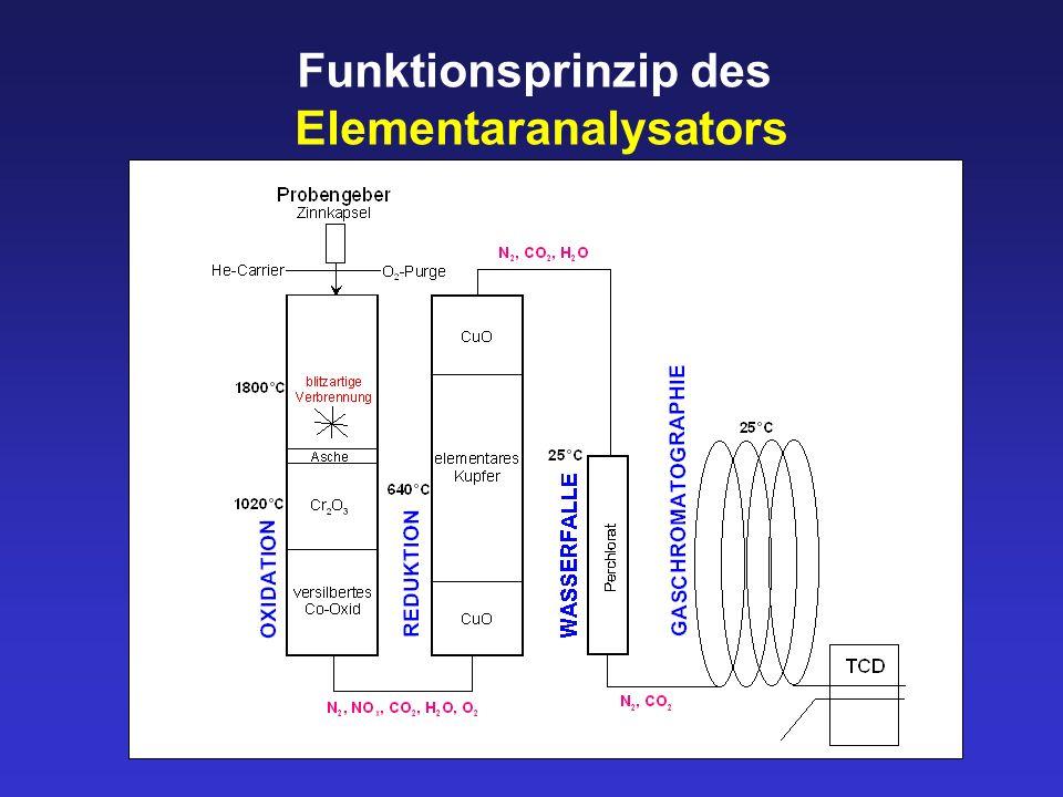 Elementaranalysators