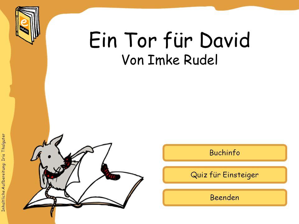Ein Tor für David Von Imke Rudel