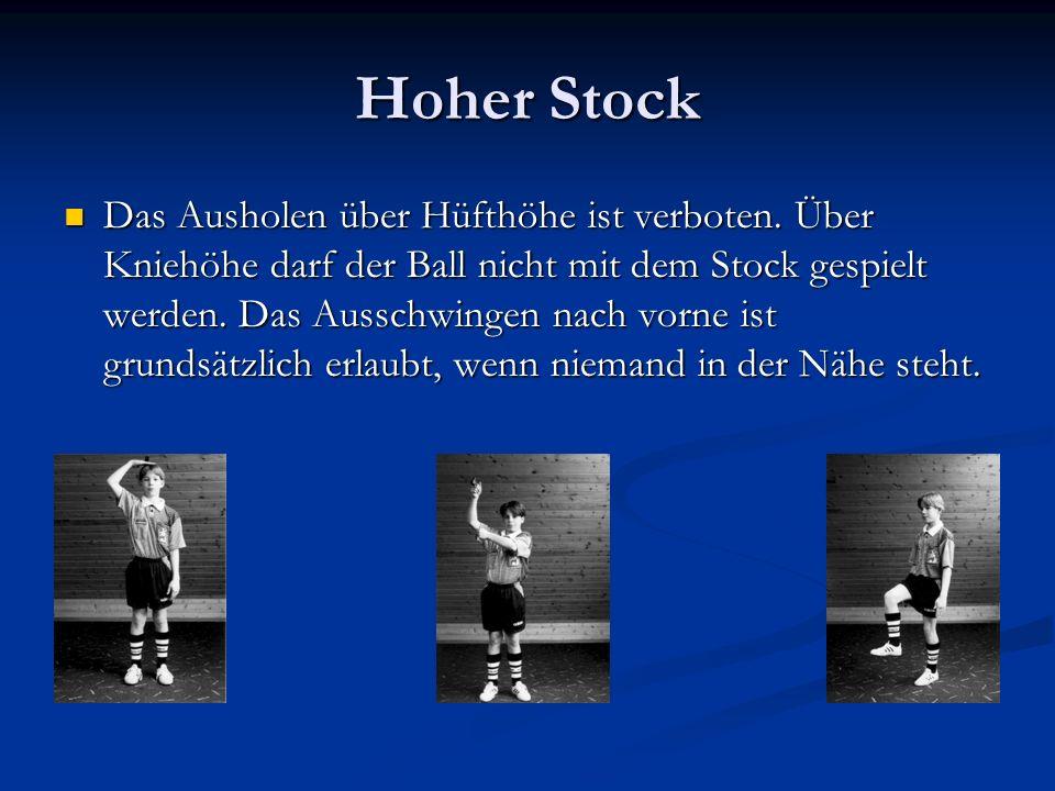 Hoher Stock