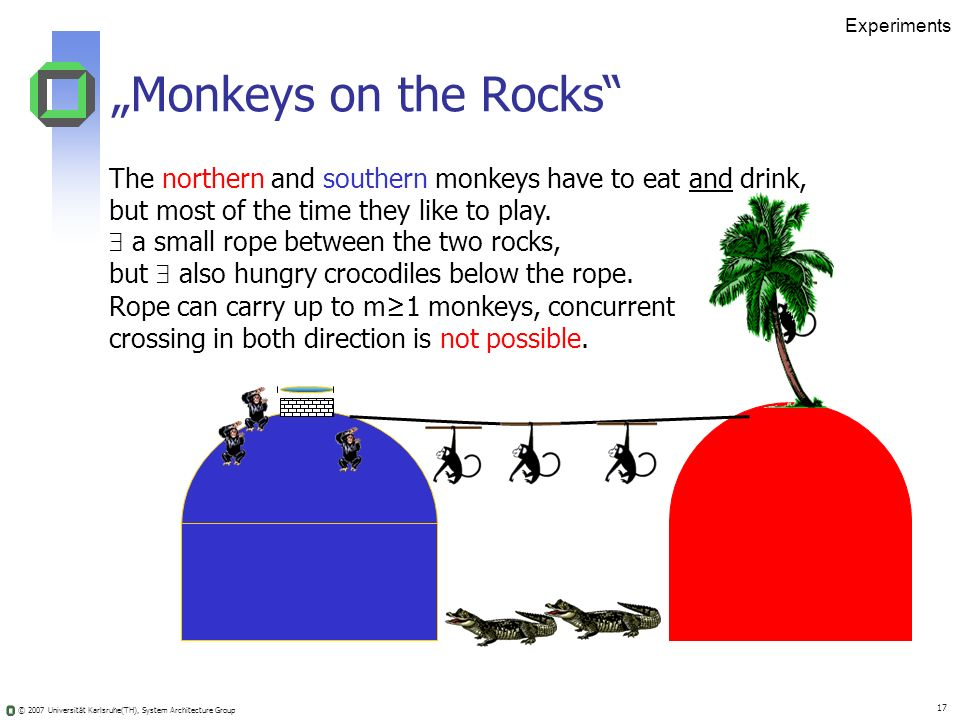"Experiments ""Monkeys on the Rocks The northern and southern monkeys have to eat and drink, but most of the time they like to play."