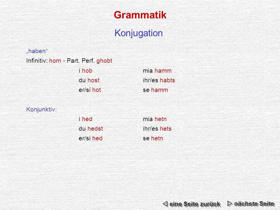 """Grammatik Konjugation """"haben Infinitiv: hom - Part. Perf. ghobt"""