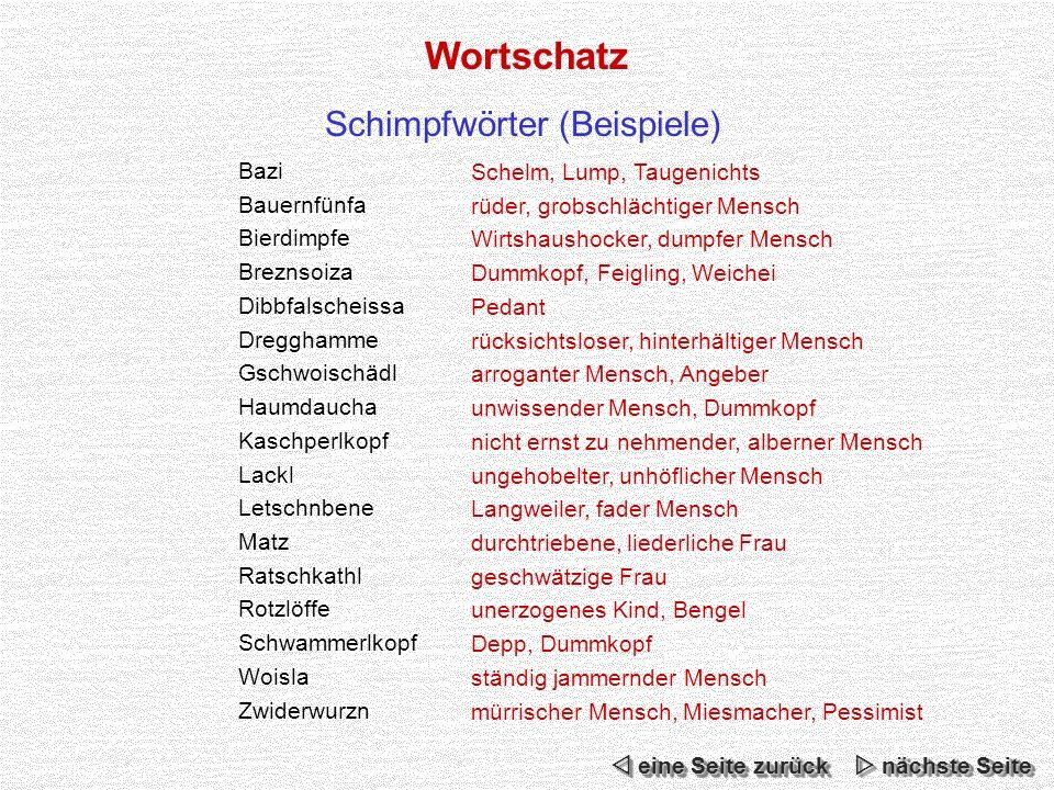 Schimpfwörter (Beispiele)