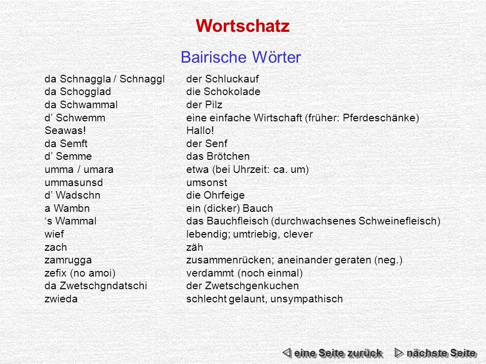 Wortschatz Bairische Wörter da Schnaggla / Schnaggl der Schluckauf