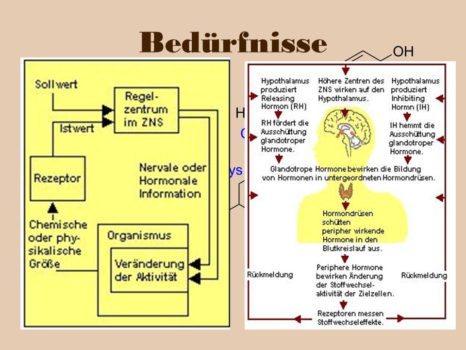 Bedürfnisse … lassen sich als bio-chemische Prozesse beschreiben.