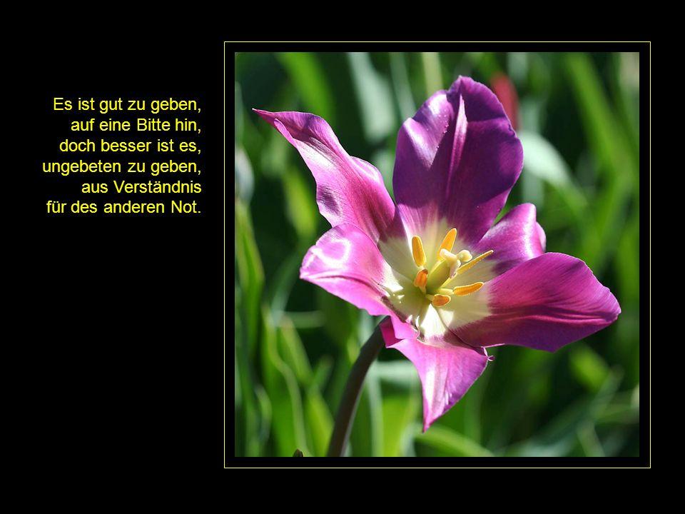 Es ist gut zu geben, auf eine Bitte hin, doch besser ist es, ungebeten zu geben, aus Verständnis.