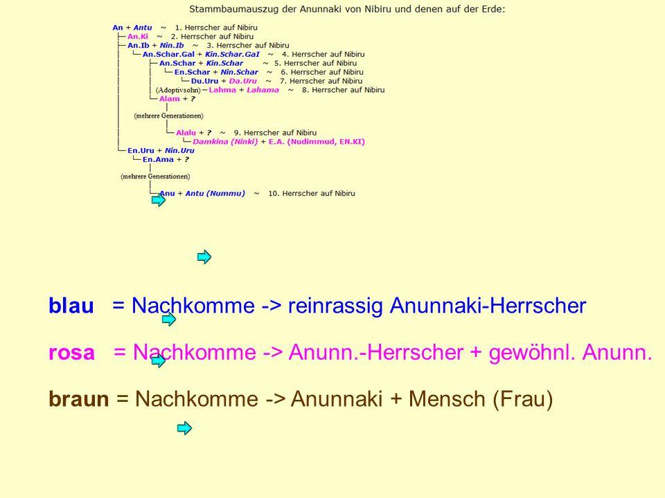 blau = Nachkomme -> reinrassig Anunnaki-Herrscher