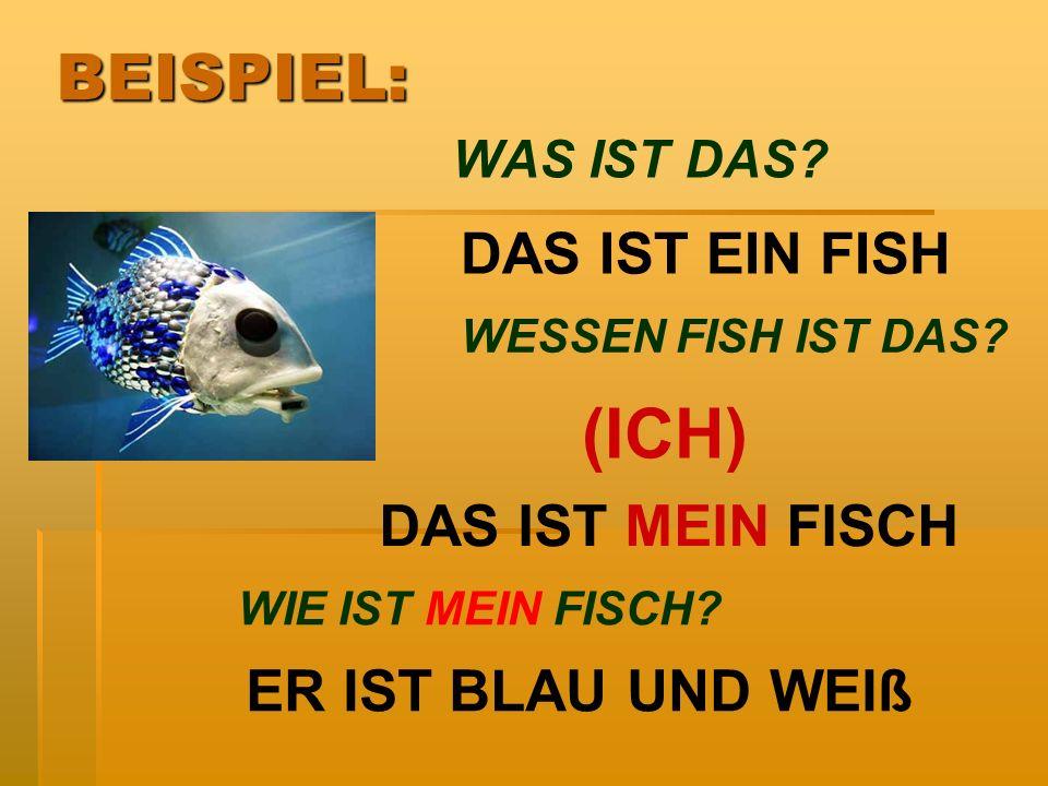 (ICH) BEISPIEL: DAS IST EIN FISH DAS IST MEIN FISCH