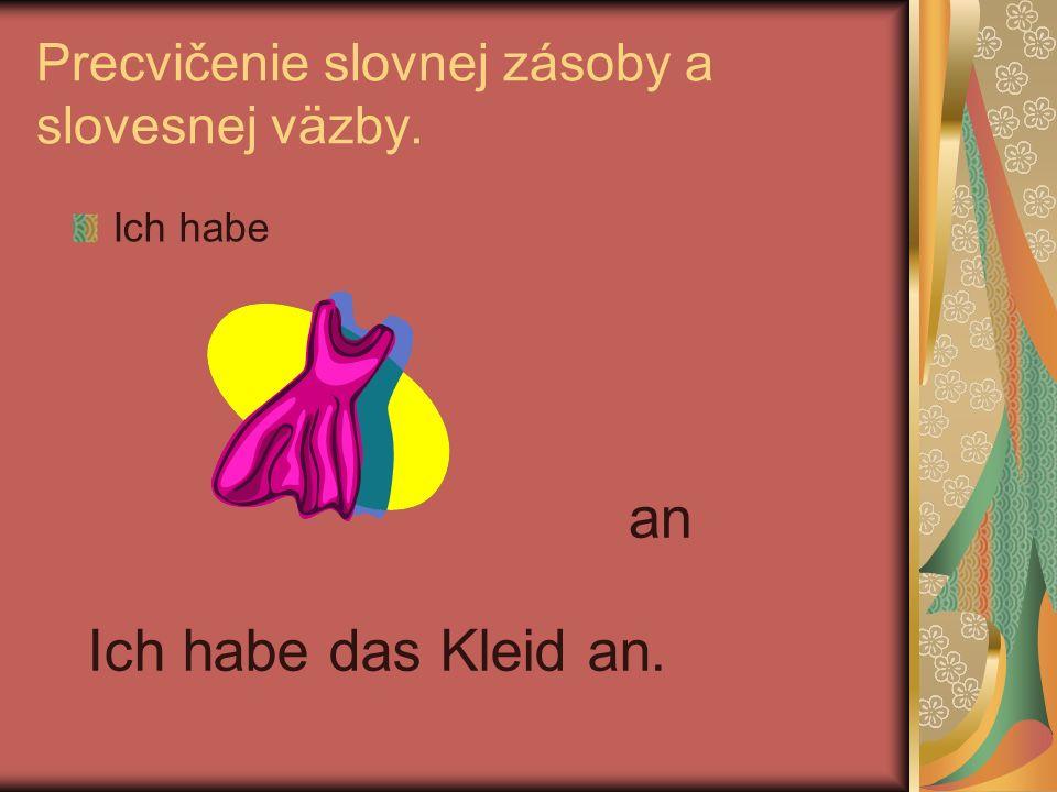 Precvičenie slovnej zásoby a slovesnej väzby.