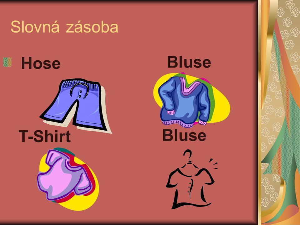 Slovná zásoba Hose Bluse T-Shirt Bluse