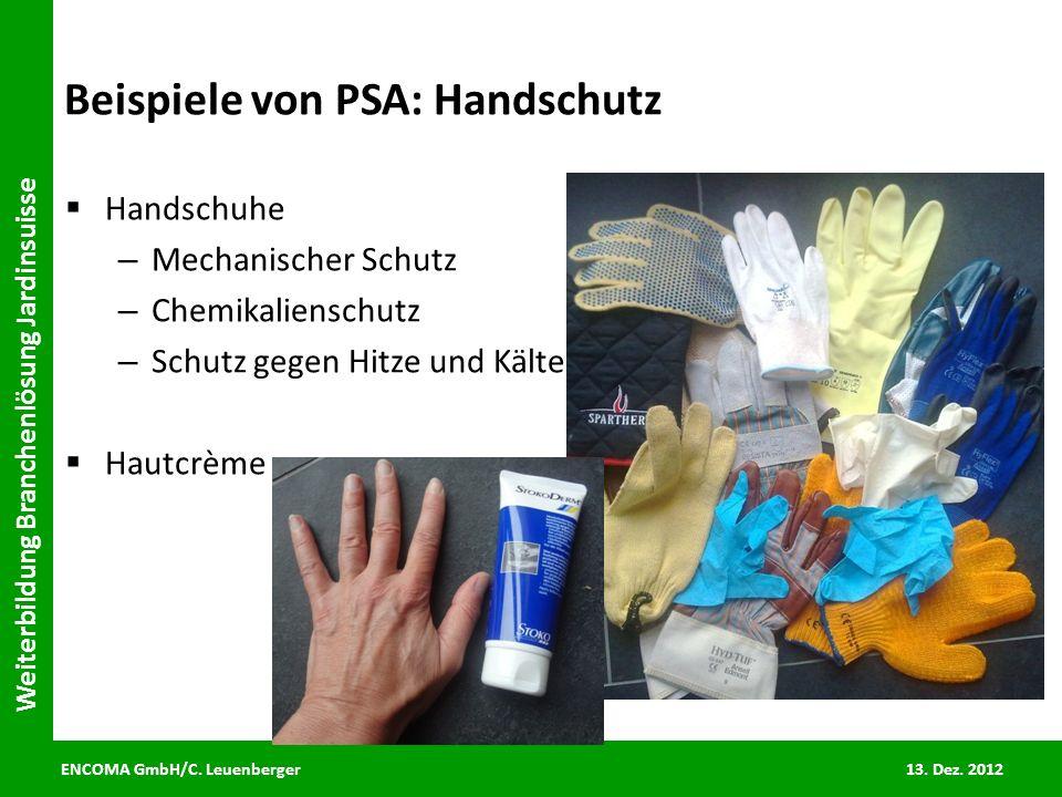 Beispiele von PSA: Handschutz